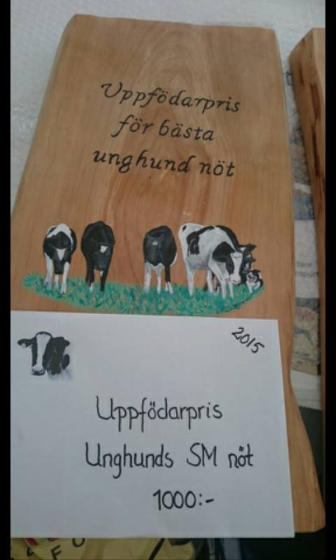 usm_not_uppfpris