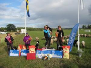 Vinnare Unghunds-SM 2015 Ann Blomkvist och Lantställets Pink